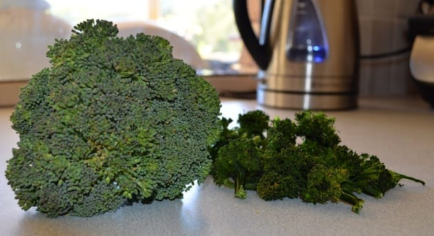 Broccoli fresh (left) and dehydrated (right)
