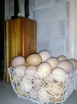 Eggs in kitchen