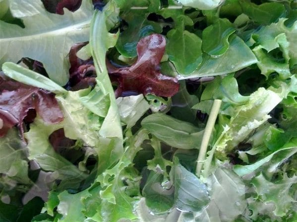 Lettuce Mix Washed