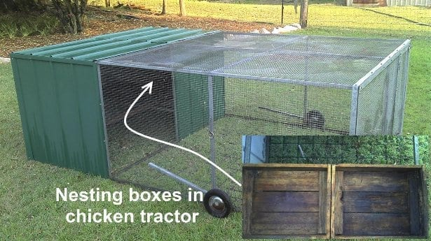 Nesting boxes in chicken tractor