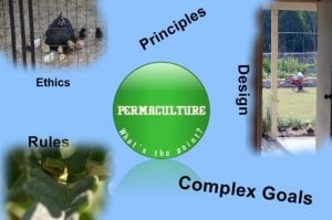 Permaculture what is the point graphic