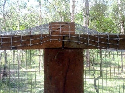 Quail Run Roof Netting