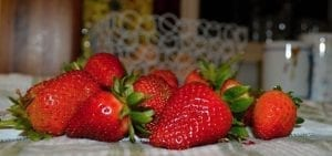 Home grown ripe strawberries
