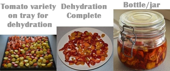Steps to great dehydrated tomatoes