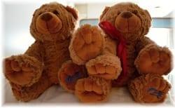 Teddy bears Sea Princes cruise ship kids club