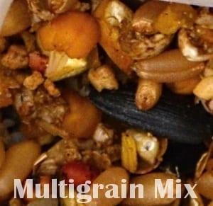 Multigrain chicken feed close up