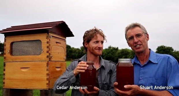 flow hive automatic honey inventors cedar and stuart anderson