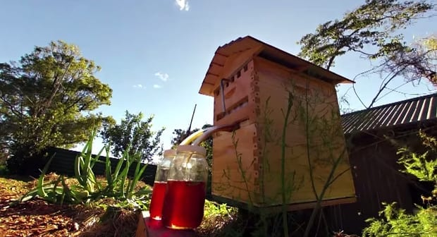 Flow hive bee hive invention