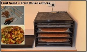fruit salad turned into fruit roll leathers