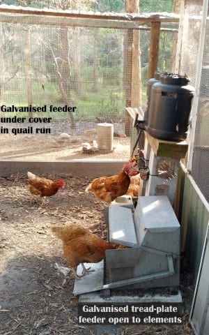 galvanised tread plate chicken feeder and standard galvanised feeder for quail