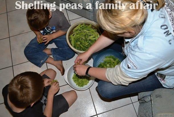 Kids helping shelling peas