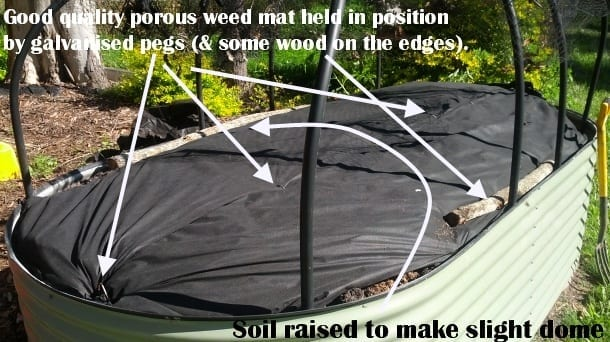 strawberry raised patch weed mat example