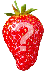 strawberry question why grow them